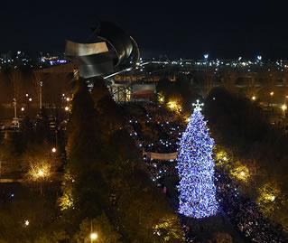 Christmas Tree Lightning Ceremony