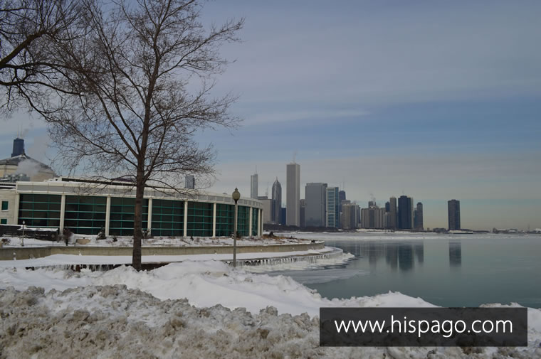 Acuario de Chicago con la ciudad de fondo – Enero 2014