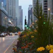 ¿Cuando viajar a Chicago? El Clima en Chicago