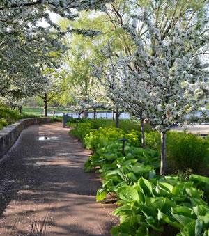chicago-para-parejas-jardin-botanico