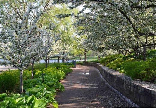 Jardin Botanico de Chicago